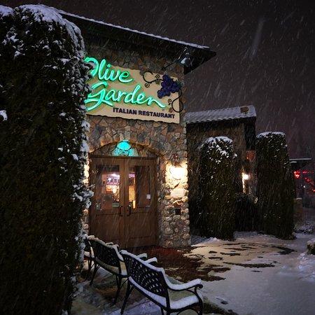 Olive Garden un lugar cálido y acogedor.