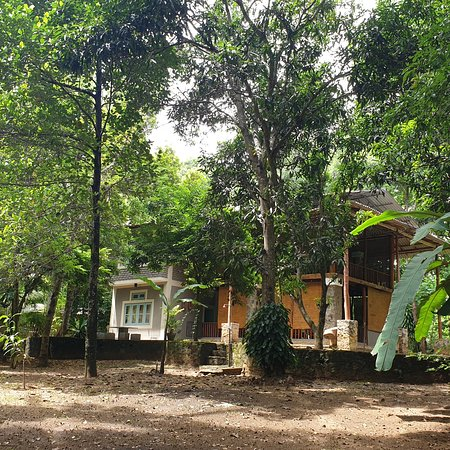 Natural comfort provided by  tranquility ideal hideout for nature lovers