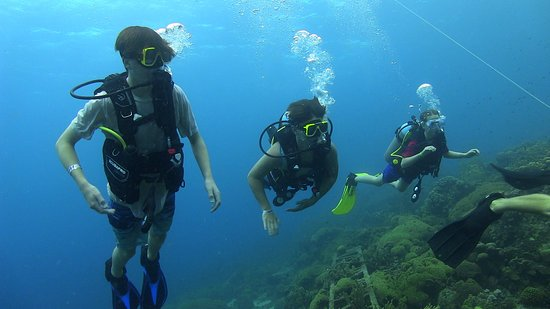 Discover Scuba Diving: Discovery dive