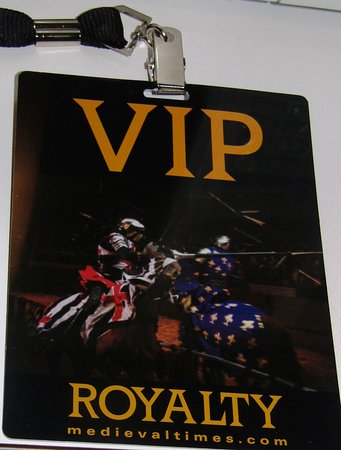 Medieval Times Dinner & Turnier Eintrittskarte in Lyndhurst, New Jersey: I like the VIP Pass - You get in quicker, and there's a LITTLE extra perks.