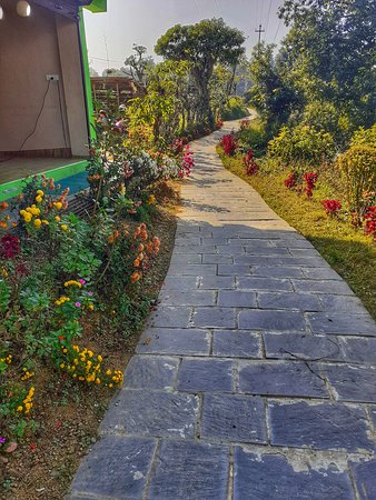 The longest journey of any person is the journey inward. #yoga #flowers #love #footpath #road #nature #beautiful #pokhara #romantic #peace #travel #meditation #plants #wildlife #photooftheday