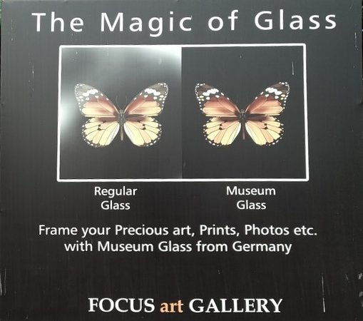Focus Art Gallery