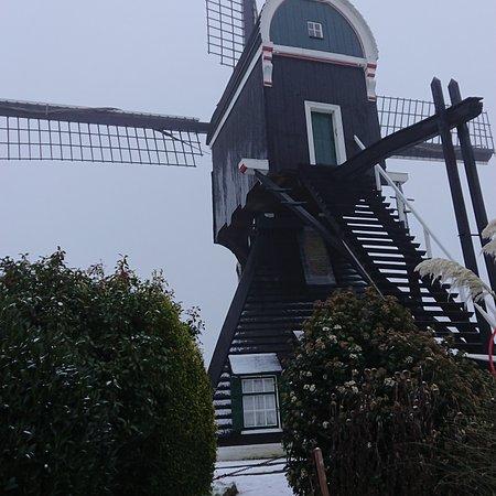 Foto's van de molen