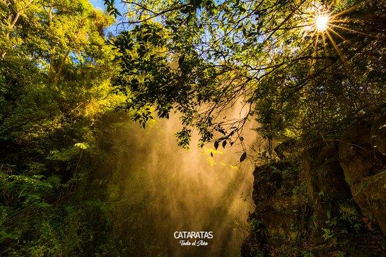 Iguazu Excursiones: Cataratas del Iguazú, un destino que podrás visitar en cualquier momento del año.  La foto corresponde al circuito inferior del Parque Nacional Iguazú (Argentina).