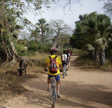 Казаманс, Сенегал: sortie de Mlomp