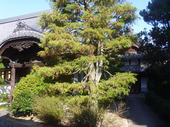 Hosho-in Temple