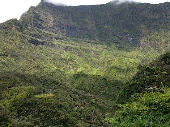 Tahiti Safari Expedition