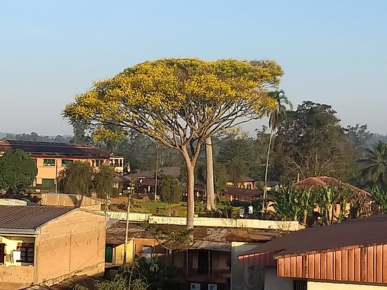 View of Dschang from Hotel Adys Plaza