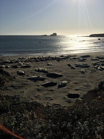 Californie : Trip to CA in 2017