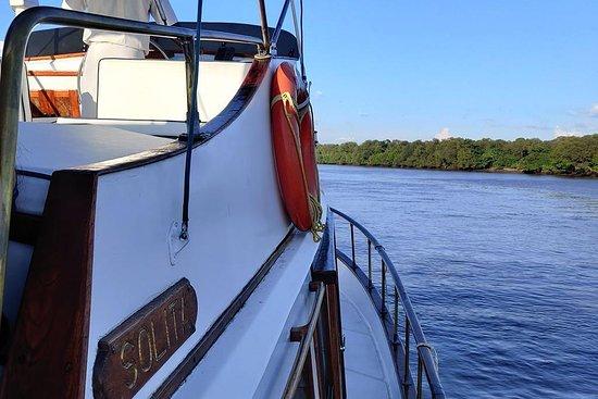 Solita cruise