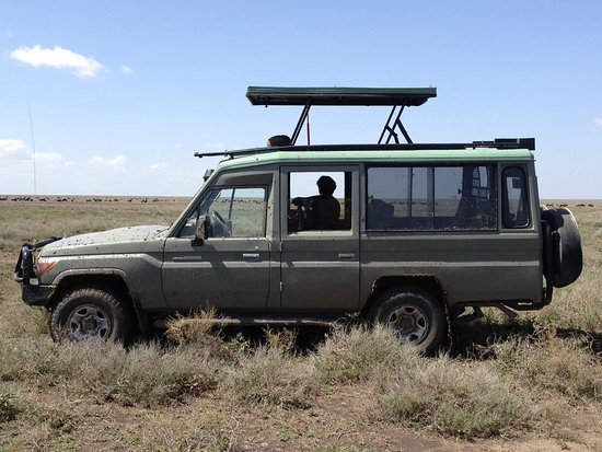 Národný park Serengeti, Tanzánia: One of our 4x4 Safari land cruiser in the Southern Part of Serengeti National park. Herd of wildebeests in the distance can be viewed this angle.