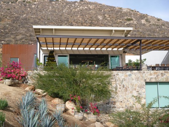 Full-Day Wine and Tastings Tour in Valle De Guadalupe: La Reina