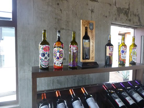 Full-Day Wine and Tastings Tour in Valle De Guadalupe: Rondo del Valle