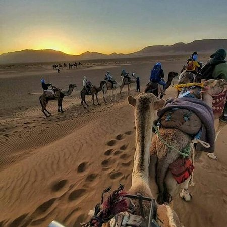 10 days desert tour from Casablanca