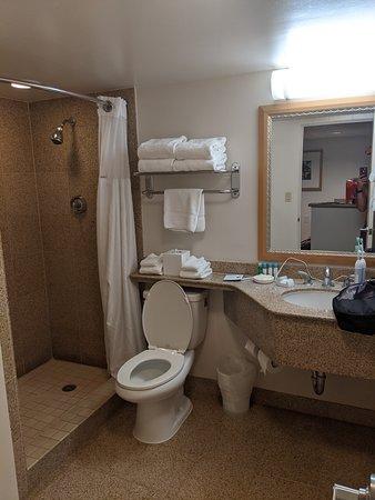 Bathroom with shower, no tub.