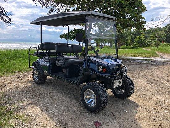 6 seater gas golf cart