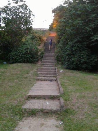 Costanera de San Pedro: Escalera de la Barranca- Pcia. Bs.As. 2019.