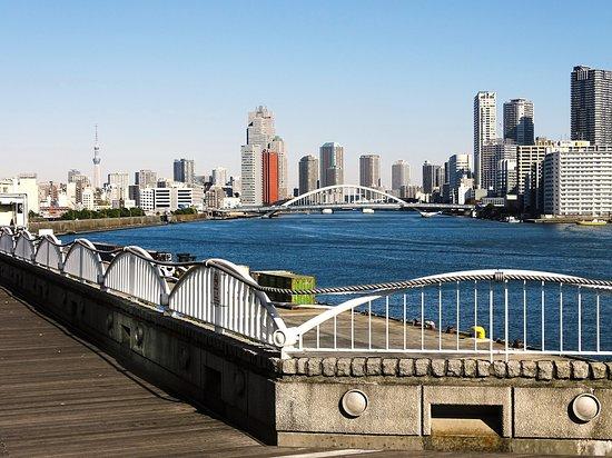 近代的な都市部が見える眺めの良いエリア。