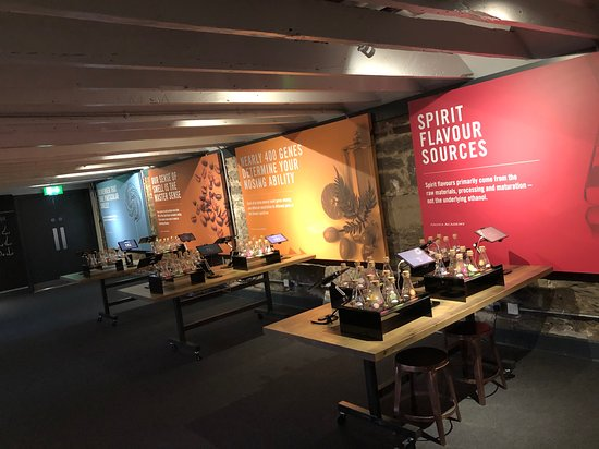 Holyrood Distillery - Whisky and Gin Tours Ticket: Beautiful and informative!