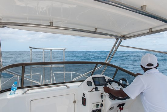 Boat / fishing trip