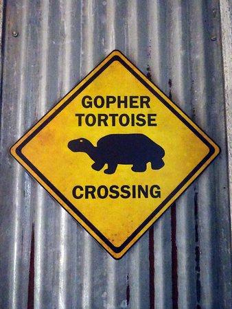 Turtle caution sign.