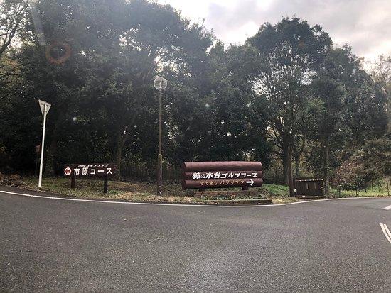 Ichihara Golf Club Kakinokidai