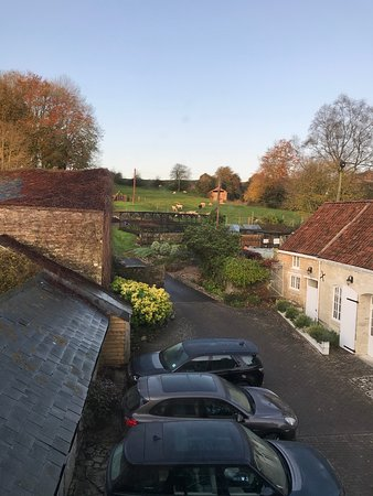 Howard's House Hotel: Check out the farm
