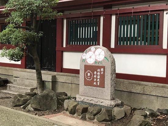 Sakai no Yochien Kyoiku Hassho no Ji
