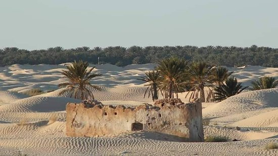 Douz, Tunesien: الصحراء