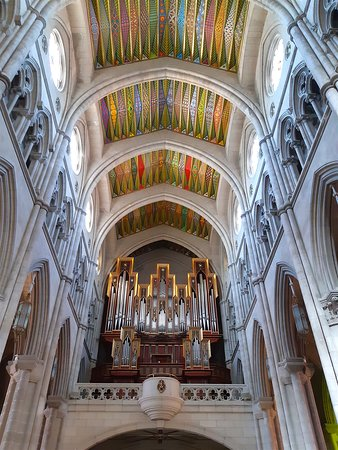 The magnificent organ and ceiling