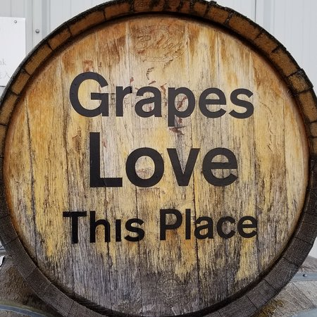 Niagara Wine Tour and Tastings with Included Transportation: Grapes love this tour
