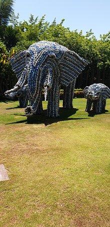 Éléphant fait en canette .1