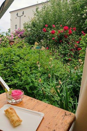 Garden Day at Franziskaner Klostergarten, Salzburg