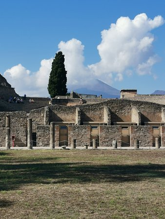 Pompeii Ruins & Mt Vesuvius Volcano Day Trip from Rome: Pompeii Ruins