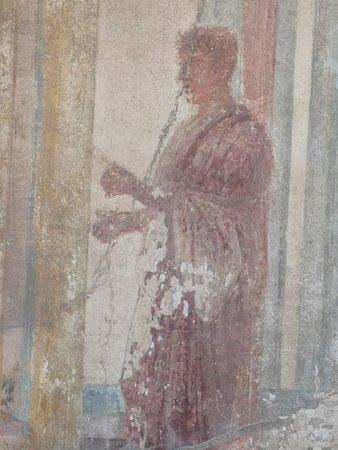 Pompeii Ruins & Mt Vesuvius Volcano Day Trip from Rome: Paintings that survived - just amazing