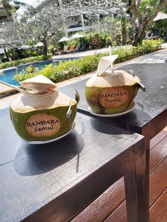 Honeymoon at Bandara resort