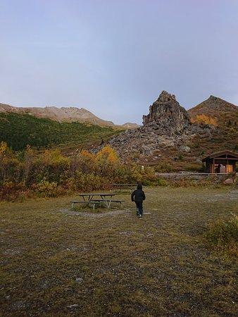 Denali National Park and Preserve, AK: Denali National Park, Savage River