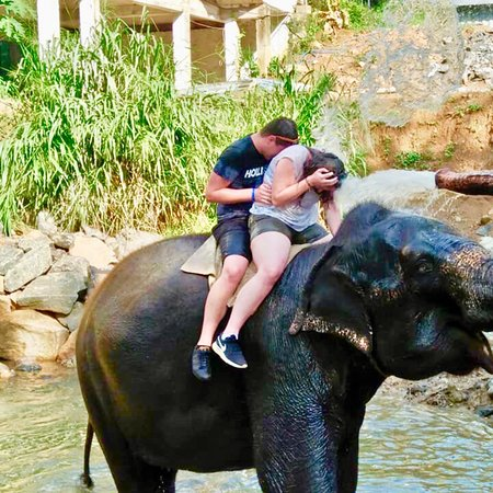 Kammala North, Sri Lanka: NISSAN WITH ASDA TOURS