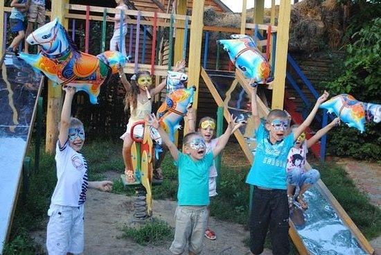 Проведение детских праздников, дней рождения и других развлекательных мероприятий.