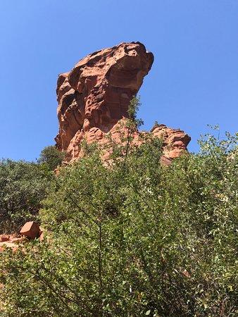 Fay Canyon Trail
