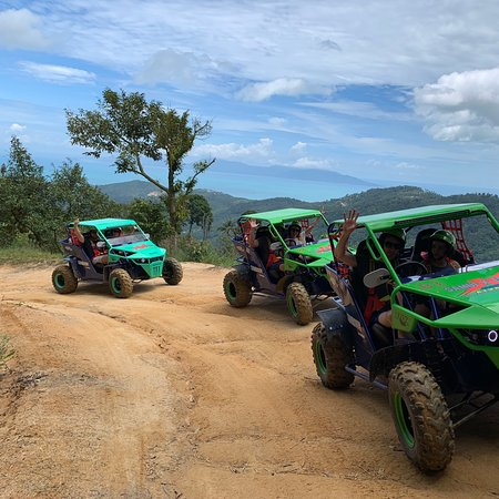 Make your day amazing and fun 100% Fully automatic ATV&Buggy