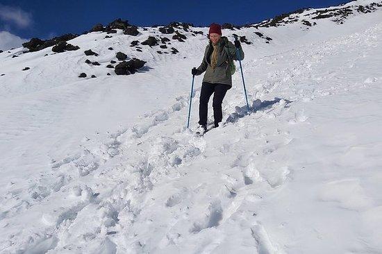 埃特納火山與雪遊覽
