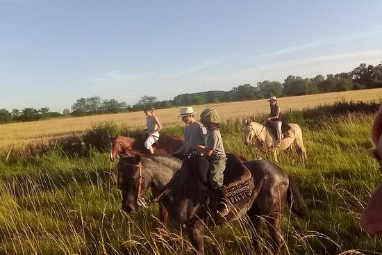Horseback riding guided by the Pampas plain: Horseback riding guided by the Pampas plain