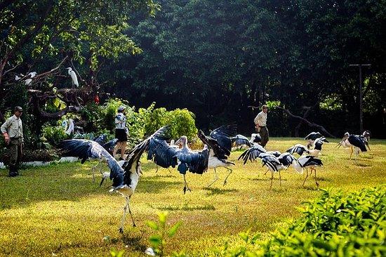 Guangzhou Chimelong Birds Park ...