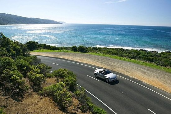 Very Small Group - Great Ocean Road Tour (Max 6 Pax): Exclusive Great Ocean Road Tour (Max 6 Pax)