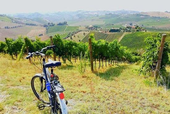 Paseos en bicicleta por pueblos de la...