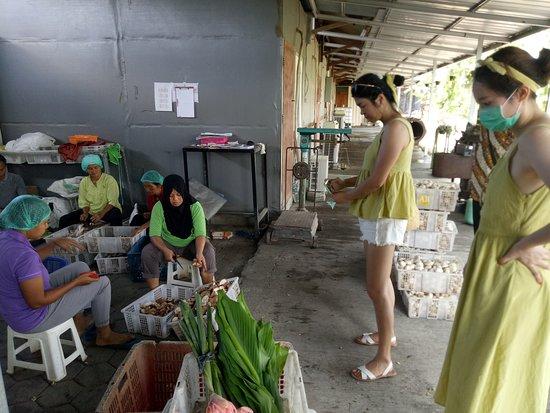 Yogyakarta Tours - Ayla Tour