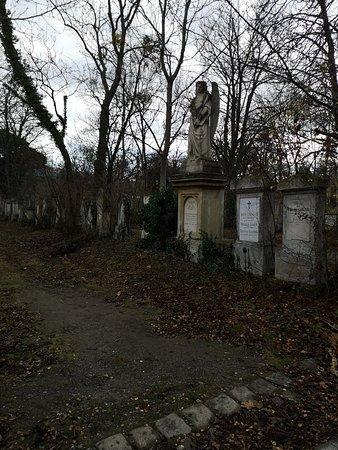 כמה  מהקברים במקום