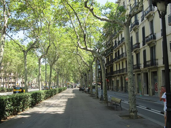 Gran Via de les Corts Catalanes: nice and quiet