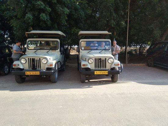 Available Jeep Village Safari tour nearby Jodhpur with taxi service in jodhpur Rajasthan